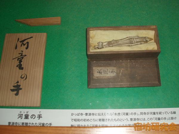 曹源寺の河童の手のミイラ