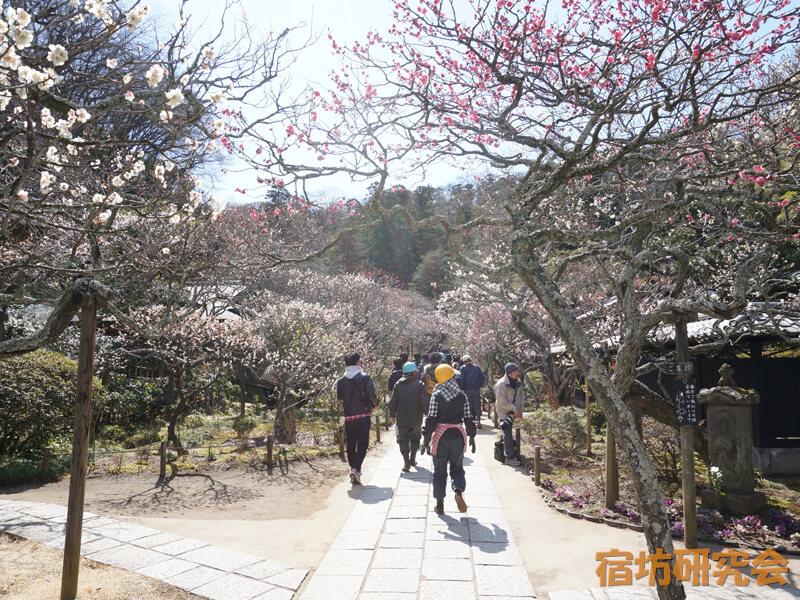 東慶寺(神奈川県 北鎌倉駅)