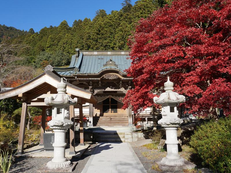竹之坊の本堂と紅葉