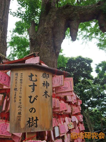 江ノ島神社『良縁成就むすび絵馬』