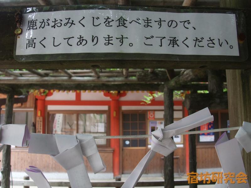 春日大社『おみくじ結び処』