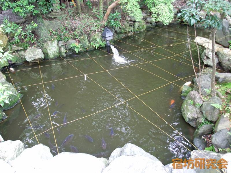 猿田彦神社の子宝池