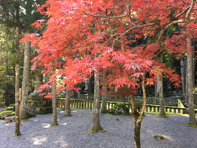 身延山御廟所の紅葉