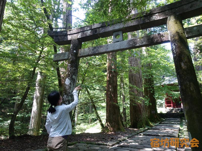 滝尾神社の運試しの鳥居