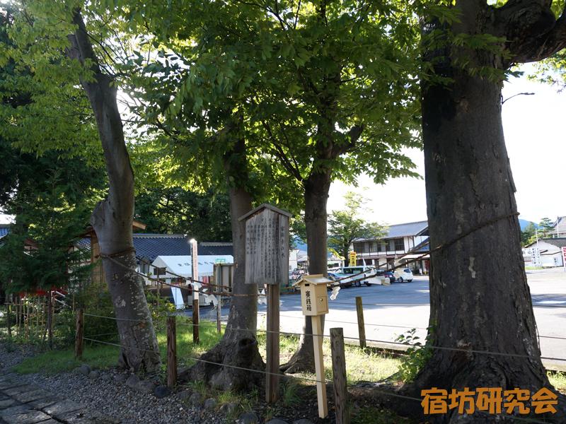 生島足島神社の家族幸の木