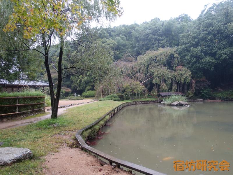 曹源寺の日本庭園
